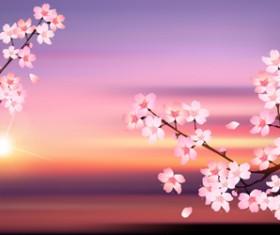 Sunset with sakura vector background