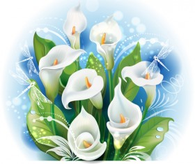 White calla with dragonfly vector material