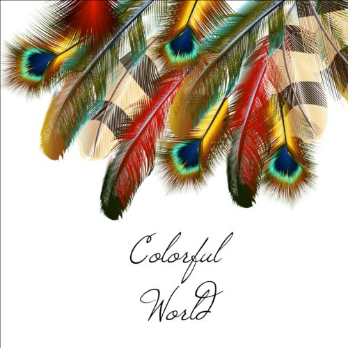 Beautiful feathers art background vector 03