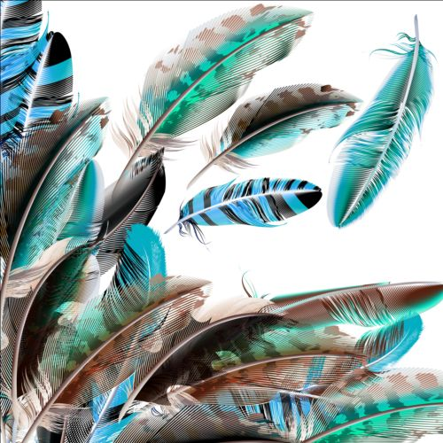 Beautiful feathers art background vector 07