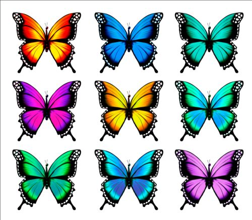 Colorful Butterflies Illustration Vector Collection 11 Free Download
