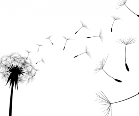 Dandelion black illustration vector 01