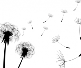 Dandelion black illustration vector 03