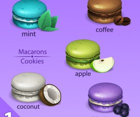 Different tastes macaroons vector 02