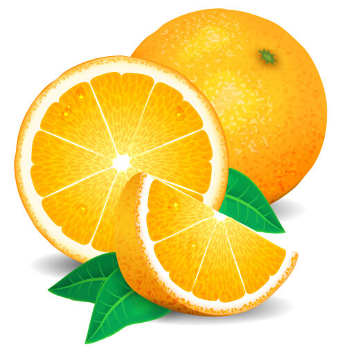 Fresh orange vector free download