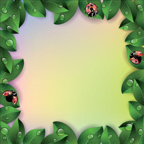 green leaves with ladybug frame vector vector frames