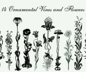 Ornamental vines and flower brushes