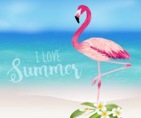 Sea and plumeria with flamingo background vector 01