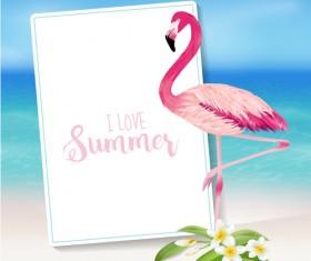 Sea and plumeria with flamingo background vector 02