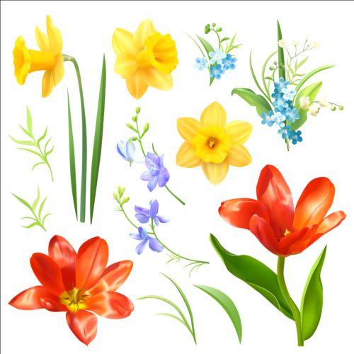 Various spring flower vector free download various spring flower vector mightylinksfo