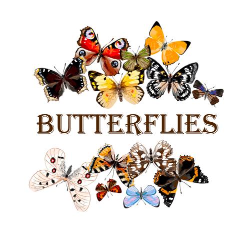 Картинки с надписями бабочек
