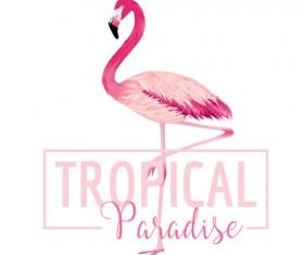Watercolor flamingo vector background 01