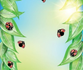 ladybug and leaves vector background 01