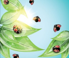 ladybug and leaves vector background 02
