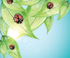ladybug and leaves vector background 03