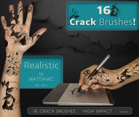 16 Kind Crack Brushes