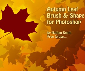 Autumn Leaf Brush and Shape