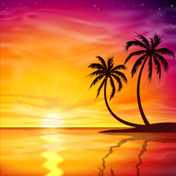 Beautiful sunset with palm trees background vector ...