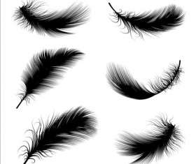 Black feathers illustration vector set 03