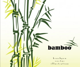Brush pen bamboo background vector illustration 03