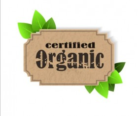 Certified organic label and green leaves vector 01
