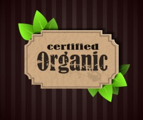 Certified organic label and green leaves vector 02