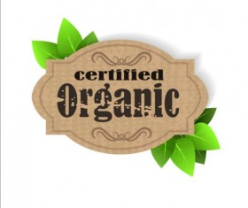 Certified organic label and green leaves vector 03