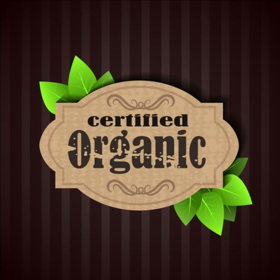 Certified organic label and green leaves vector 04