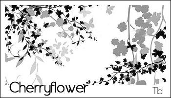 Cherry flower PS brushes