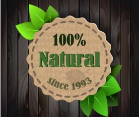 Eco nature label with gree leaves vector 02