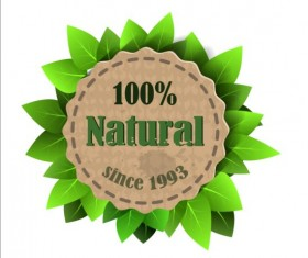 Eco nature label with gree leaves vector 03