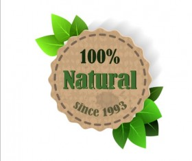 Eco nature label with gree leaves vector 04