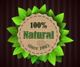 Eco nature label with gree leaves vector 05