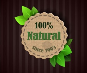 Eco nature label with gree leaves vector 06