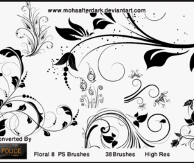 Elegant Floral PS burshes