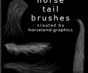 Horse Tail Brushes PS