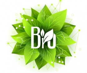 Bio label badge with green leaves vector 01