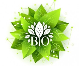 Bio label badge with green leaves vector 02