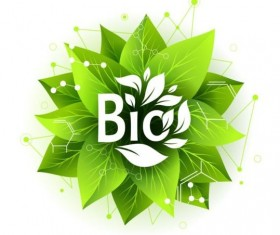 Bio label badge with green leaves vector 03