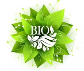 Bio label badge with green leaves vector 04
