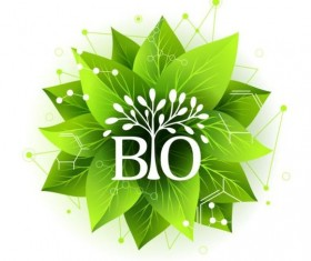 Bio label badge with green leaves vector 05
