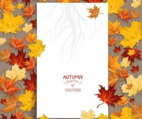 Blank paper with autumn leaves vector