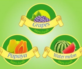 Fruits labels with ribbon vector 02