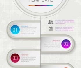 Infographic template options vector material