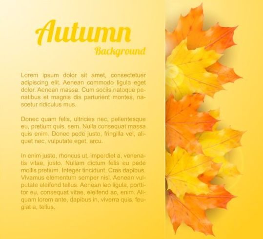 Maple leaves with autumn background vector 01 - Vector Background free ...
