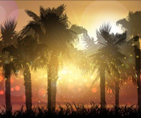Palm trees with sunset summer background 01