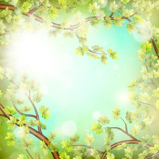 summer green leaves with sunlight background vector 04