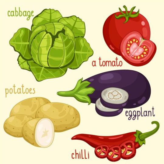 Vegetables with name design vector 06 - Vector Food free download