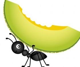 Ant carrying cantaloupe melon vector