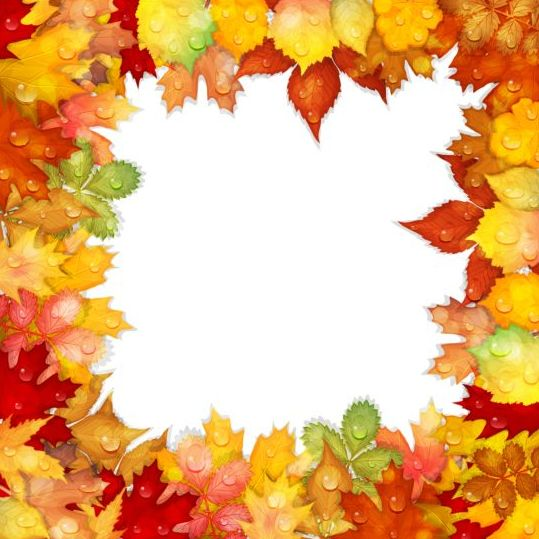 Autumn leaves frame with water dorp vector